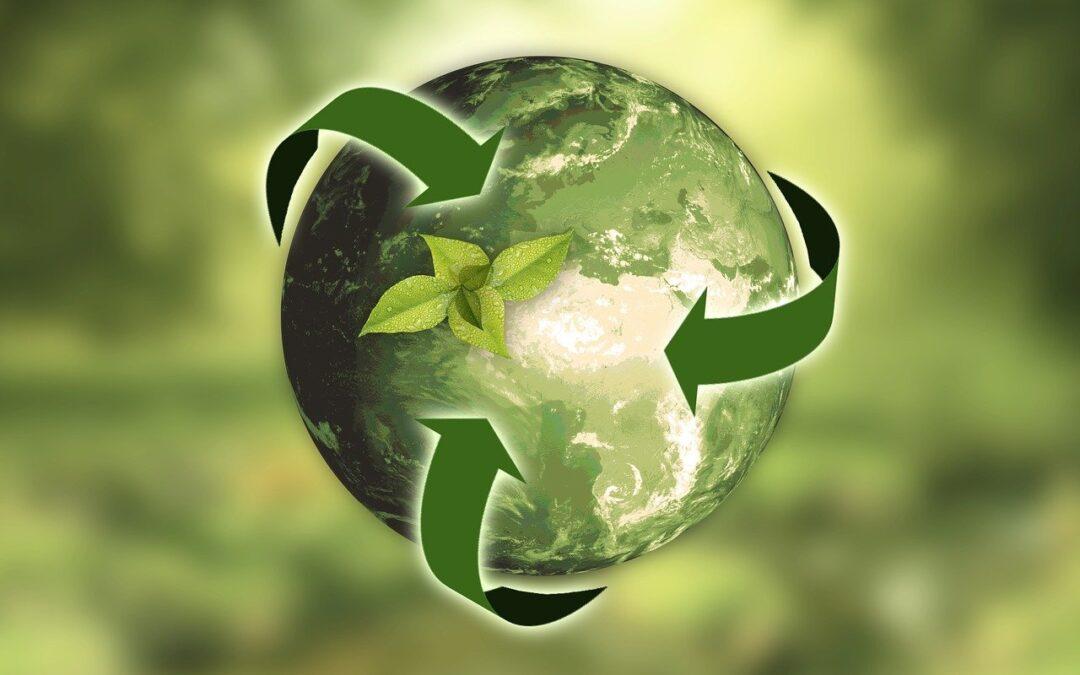 Em modo sustentável
